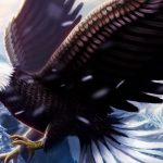 Eagle, wings, wallpaper