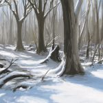 Forest, shade, trees, nature, art, snow, winter