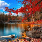 Autumn nice scenery HD wallpaper download
