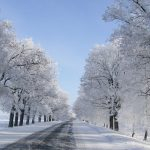 After snow road scenery wallpaper