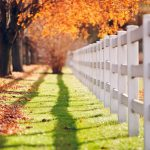 Autumn fence fence beautiful scenery wallpaper