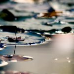 Perspective, river, photo, water, color, wallpaper, nature