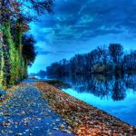 The river leaves beautiful scenery wallpaper download