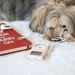 Puppy books mp3 little fresh desktop wallpaper