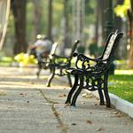 Benches in the park wallpaper