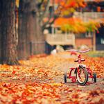 Bicycle children's playground autumn