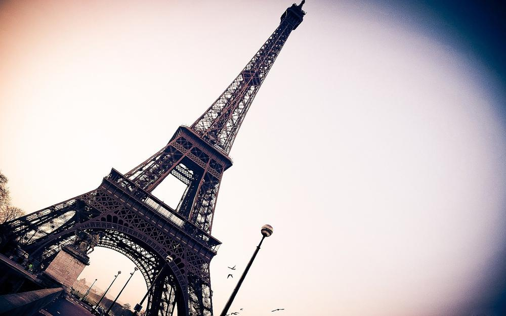 Small fresh eiffel tower in paris, france wallpaper