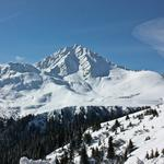 Forest, photo, mountains, landscapes, snow, winter, views