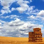Straw, clouds, clouds, sky, the, straw, field