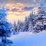 Sunset, winter, snow