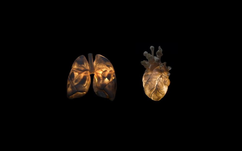 Vessels, black, heart, background, clearance light
