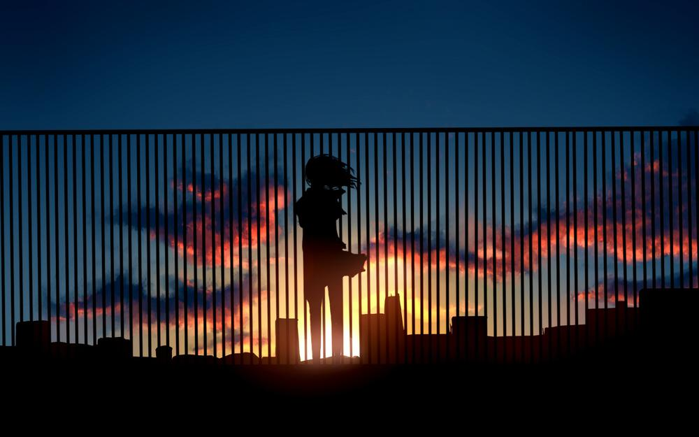 The girl at the fence at sunset