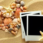 Seashells, sand, photo