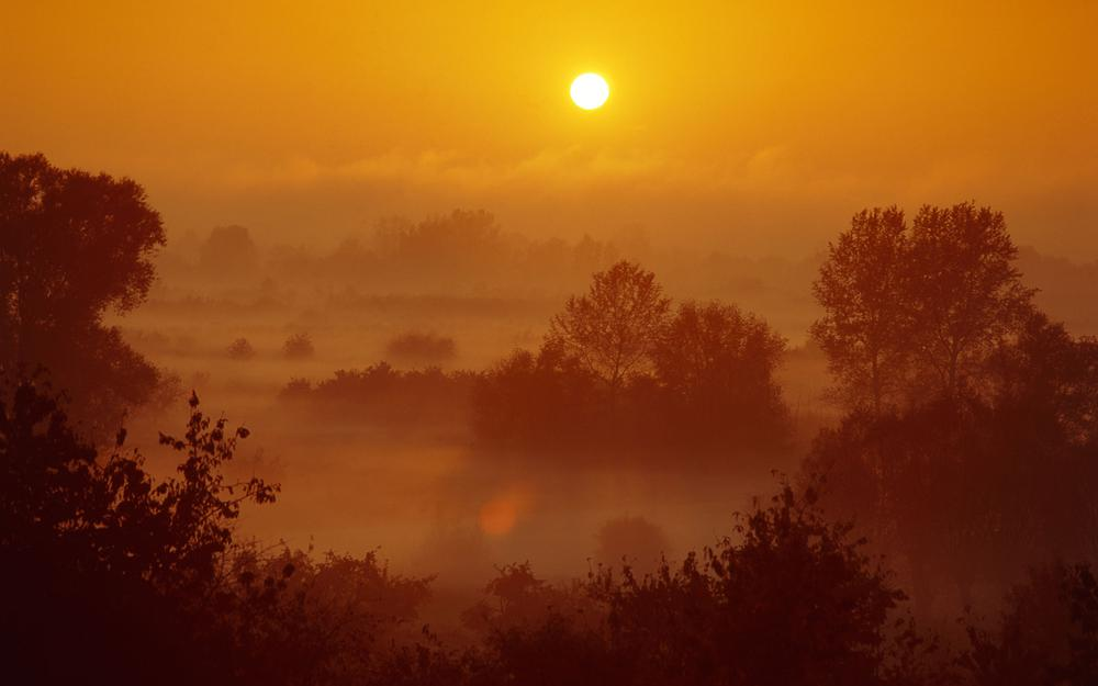 The sun rising in the mist
