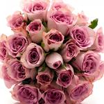 Beautiful roses, flowers, bouquets, wallpaper