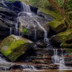Gurgling streams, waterfalls hd desktop download