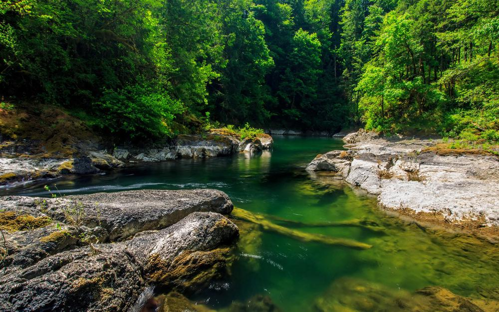 Foot of the mountain forest streams and rivers nature landscape wallpaper