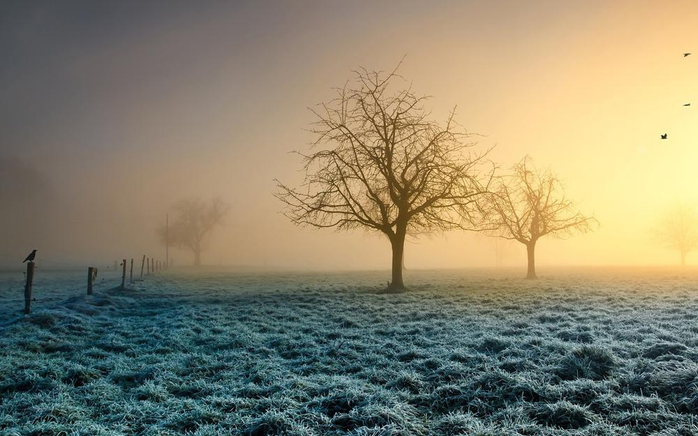 Cold winter morning landscape wallpaper