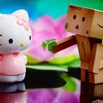 Carton and the kitty cat hd wallpaper