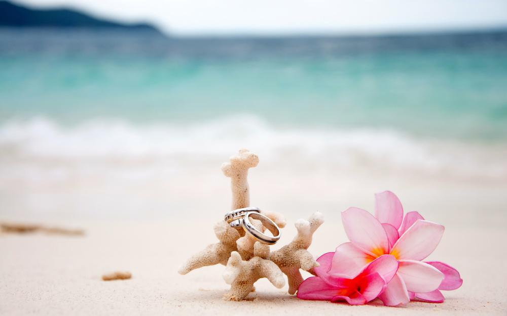 Ring, flower, coral