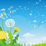 Collage, dandelion, clouds, flowers, a blade of grass, grass, vector, sky