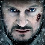 Liam neeson, actor, the grey, look, liam neeson