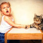 The little girl, cat, tables, arm-wrestling, cute wallpaper