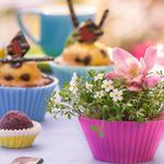 Muffins, cookie cutters, cakes, flowers