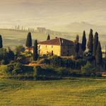 Fields, trees, house, tuscany, italy