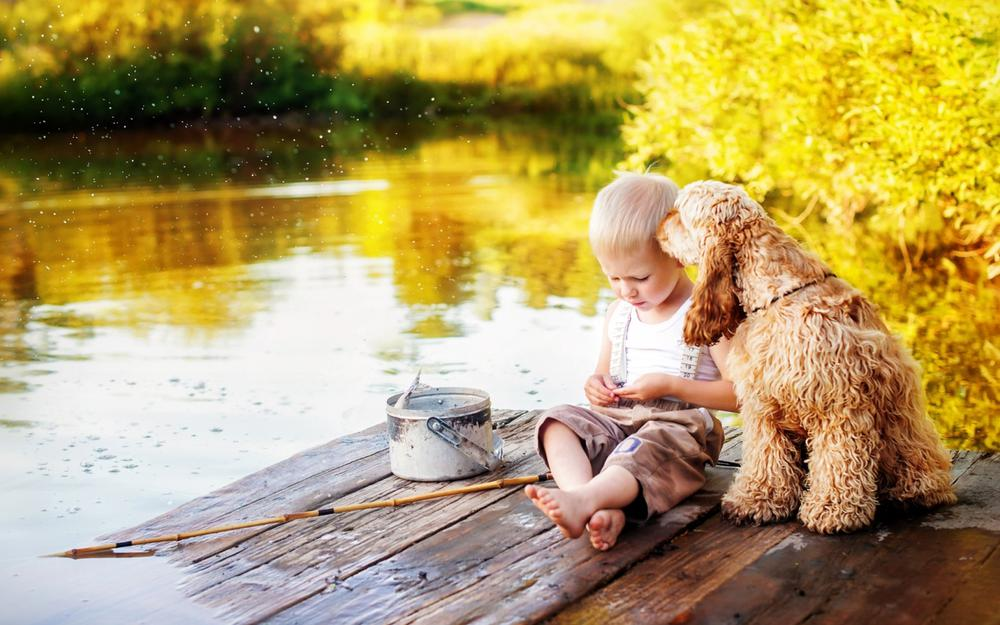 River, summer, child, dog, friend, warm and lovely wallpaper