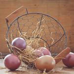 Easter eggs, basket, eggs