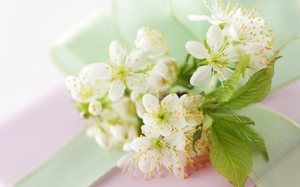 Decorate the house in spring