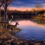 Deer, quiet night, painting, art widescreen, landscape desktop wallpaper
