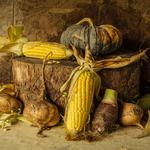 Harvest, corn, corn, vegetables, vegetables, still life, still life, pumpkin, pumpkins, harvest, autumn