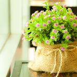 Bag with flowers wallpaper