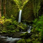 Oregon, streams waterfalls, forests, scenic wallpaper