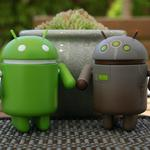 Android, robots, flowerbed