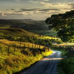 Nature, landscape, trees, roads, widescreen, desktop wallpaper beauty