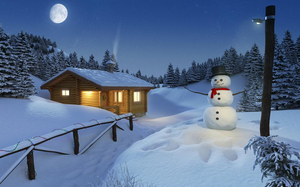 Forest, winter, house, fence, light, snow, moon