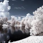 Winter, snow, trees, forest, evening, river, natural beauty wallpaper