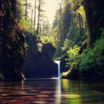 Nature, forests, streams, waterfalls, scenic wallpaper