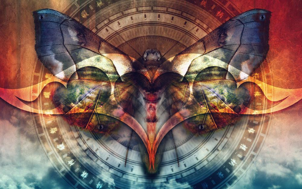 Butterfly, multiple, round