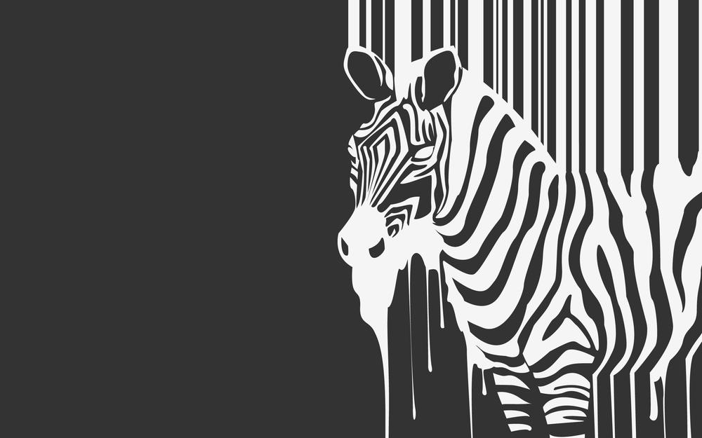 Stripes, animal, zebra