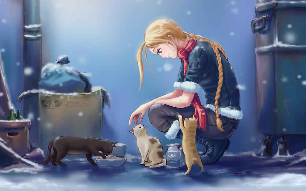 Winter, good-hearted girl, street, stray cats, food, wallpaper