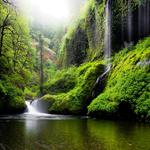 Oregon, river, water, waterfalls, nature, forest, woods, green, wallpapers