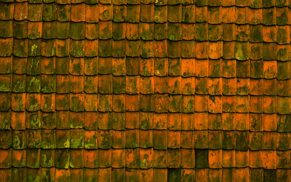Roof, texture, surface
