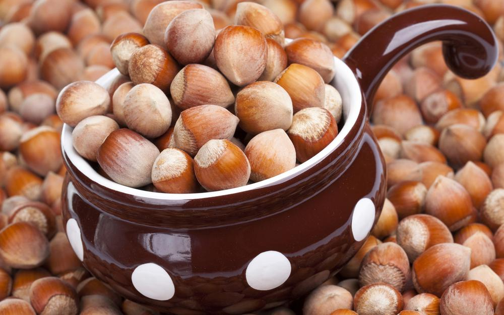 Nuts, dishes, forest, hazelnuts