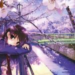 Cherry, bridges, canals, bicycles, girls, anime beauty wallpaper