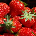 Berry, strawberry, red, close-up