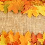 Autumn leaves fabric wallpaper